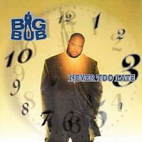 picture of the album Never Too Late by Big Bub